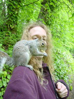 Picture of squirrel on my shoulder, eating a nut.